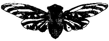 Las Cicadas Logo