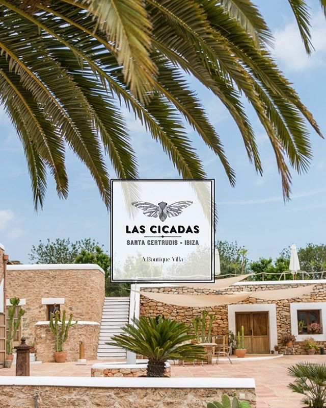 // www.lascicadas.com // check out our new website + our calendar 📆 for some available dates left in #ibizasummer2018 #lascicadasibiza // book your #summerholiday NOW // #boutiquevilla #vacationvilla #holidayhome #destination #ibiza 🌵