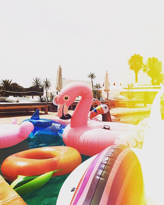 Hot Days. Pool Days. 🌈🌴🦄🌞🐬💦 #summer #poolday #poolparty #floaties #hot #ibiza #lascicadasibiza #vacationdestination #holidayhome